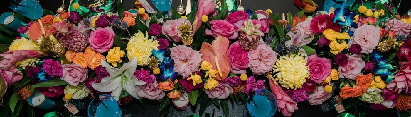 An abundance of colour, a party paradise!